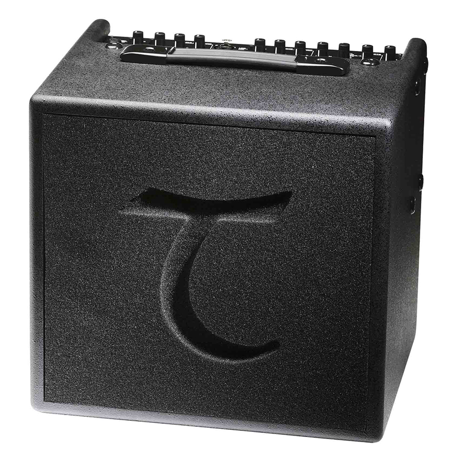 Tanglewoof T6 60W Acoustic Combo Amplifier