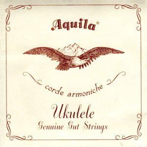 Aquila DGBE Baritone Ukulele String Set