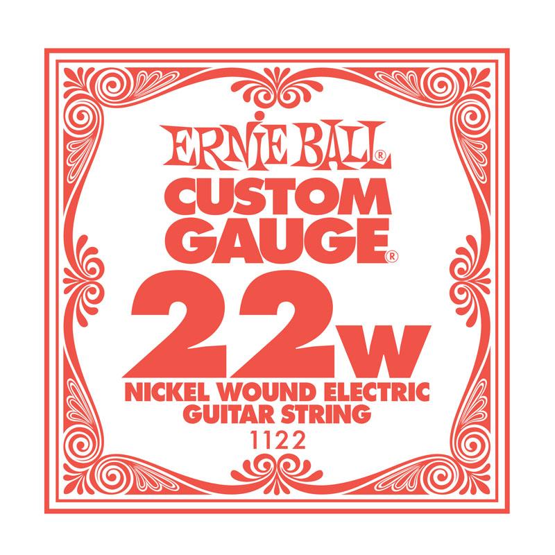 Ernie Ball Nickel Wound .022 Guitar String